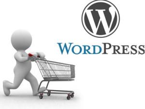 建立WordPress独立网店或网站