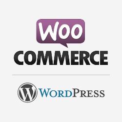 WooCommerce购物商场主题