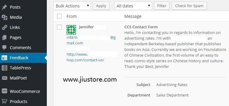 美国个人博客赚钱:出租一些广告位置