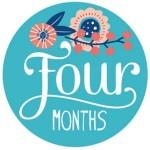 四个月发展历程 (WordPress个人网站)