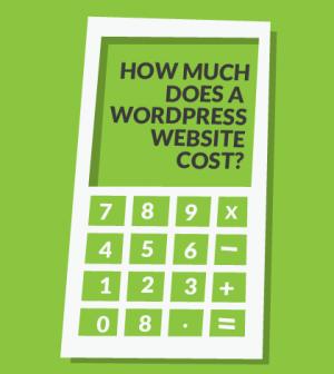 建立网站或网店的费用