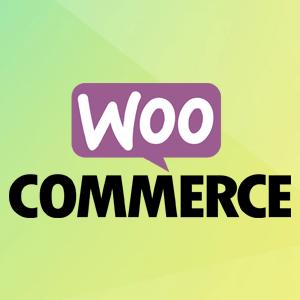 第一课 安装WooCommerce插件 (WooCommerce 101 基础教程视频)